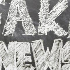 Fake News – Was denkt der Wähler darüber?