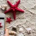Bucht der digitale Reise-Helfer Ihren Urlaub?